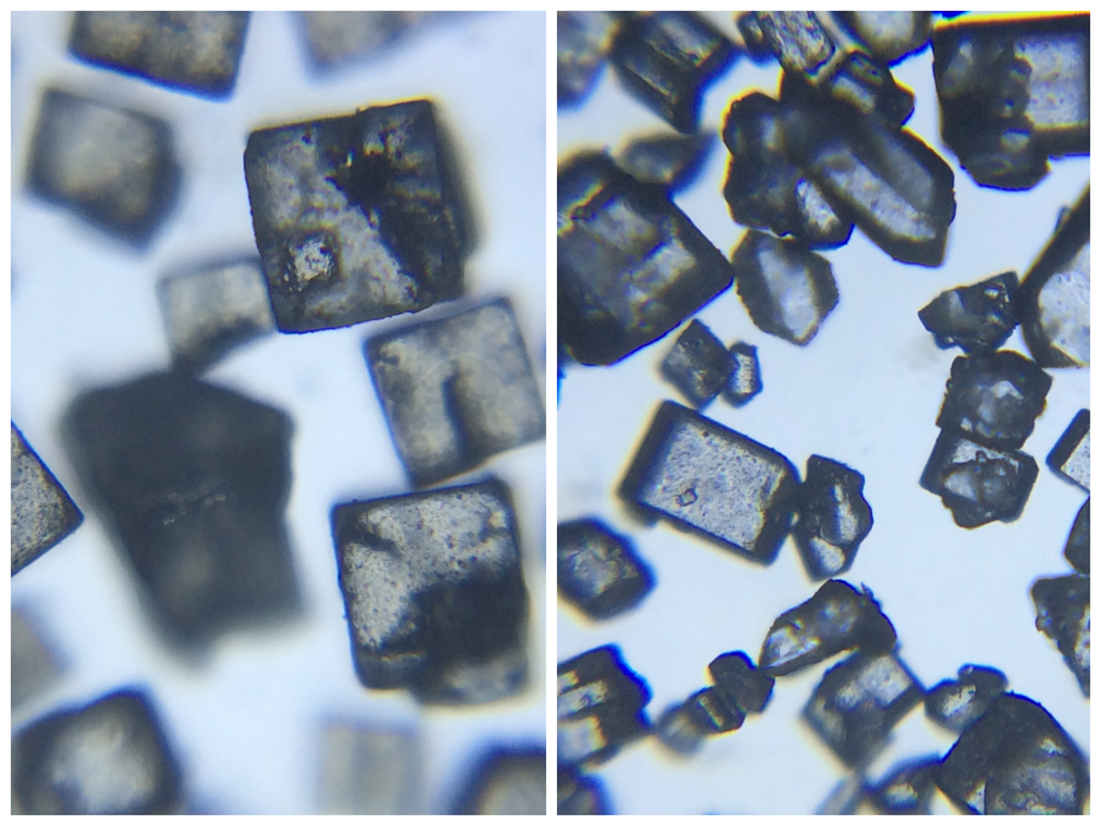 Left: Salt at ~111x (50x optical with 2.22x digital). Right: Sugar at ~111x (50x optical with 2.22x digital)