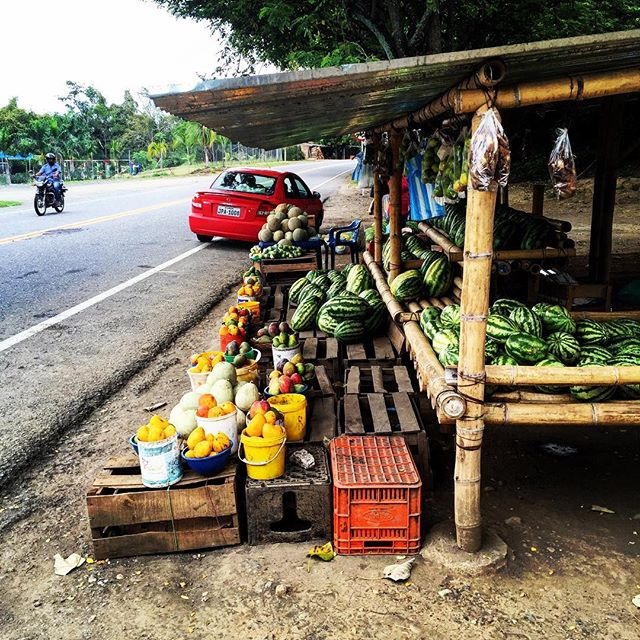 Buying a watermelon in a town called Watermelon.