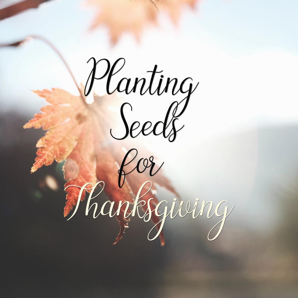 Planting Seeds for Thanks.jpg