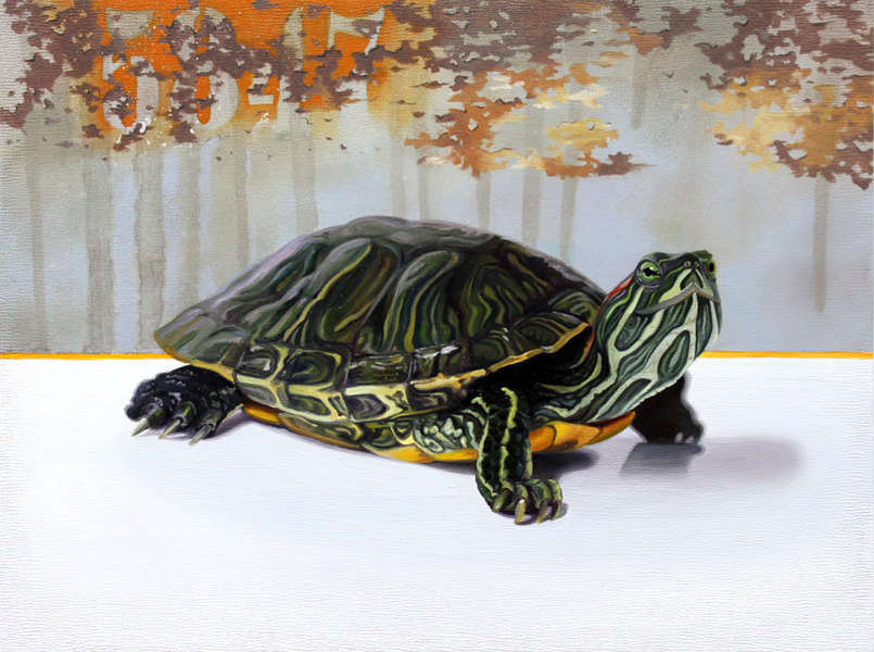 SLOW POKE | OIL ON BOARD | 10X8 - sold