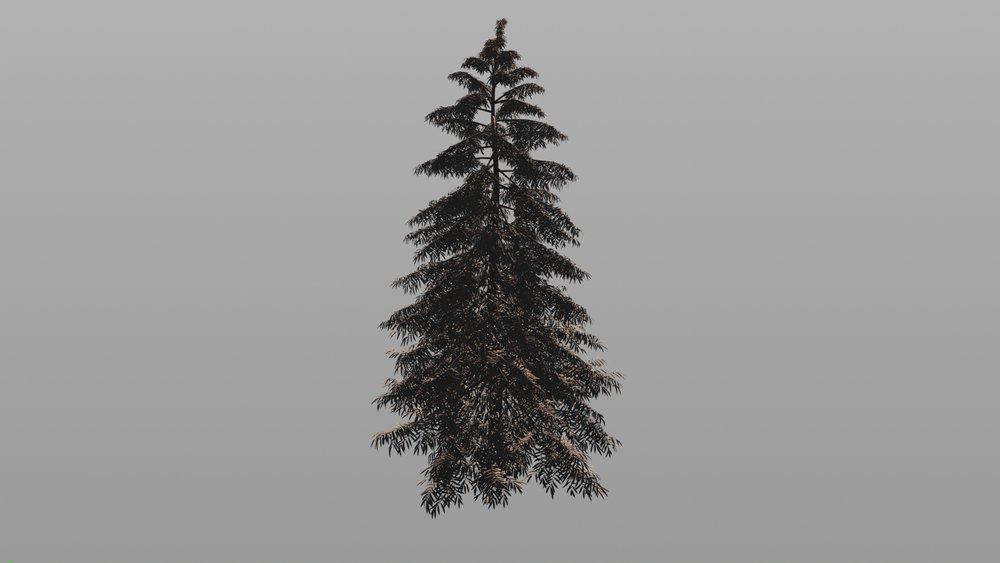 SPin-Tree-720.jpg