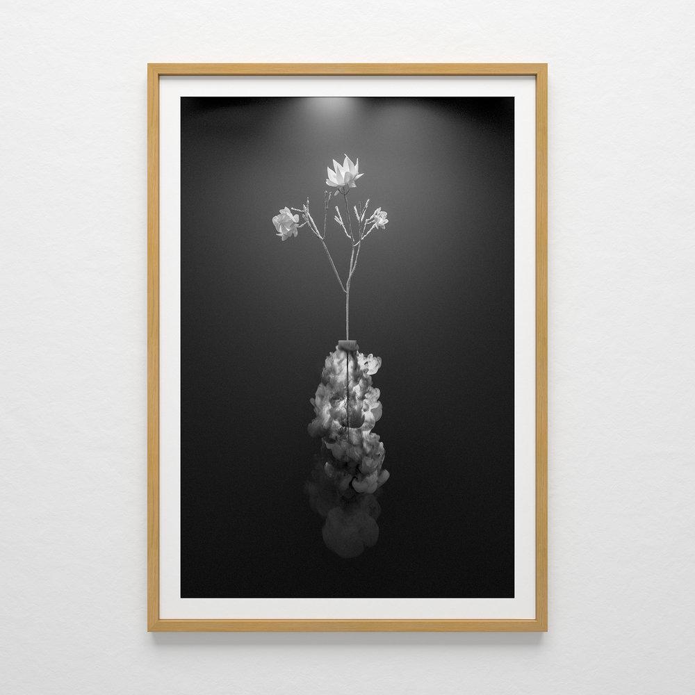 frame-final-web.jpg