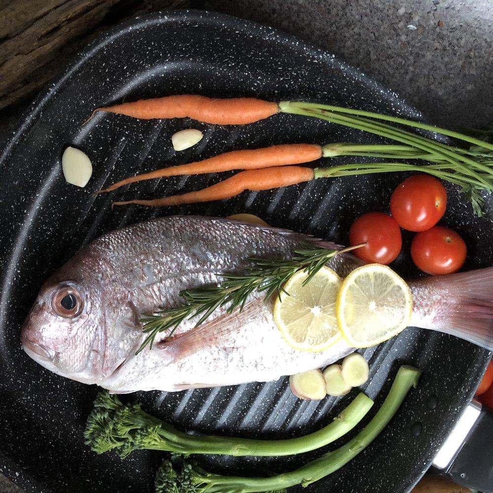 Scale Fish Varieties