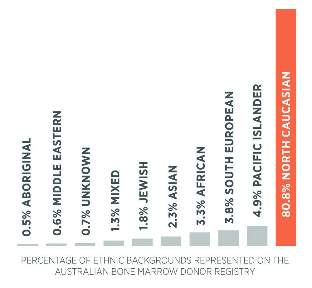 bar graph of ethnic representation.jpg