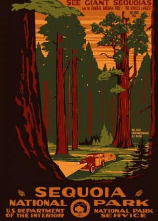 Ranger Doug Sequoia National Park Poster. Image Courtesy of  Ranger Doug  . Prints available at  Ranger Doug   .