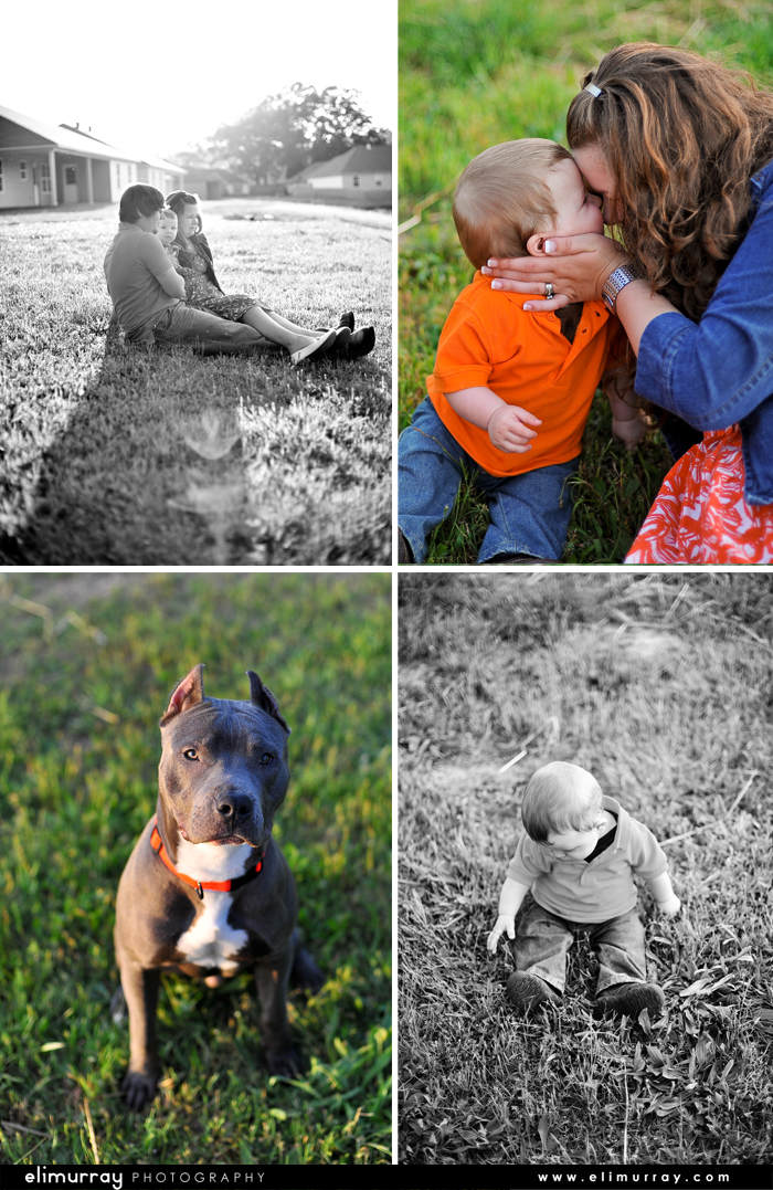 Pit Bull and Baby Photos
