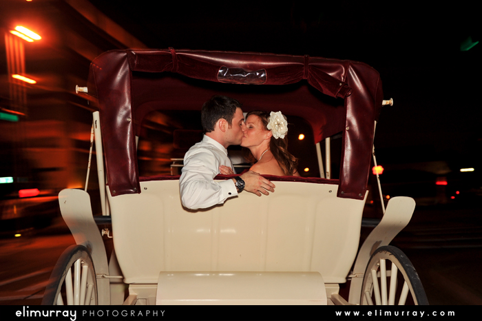 Little Rock Carriage Wedding