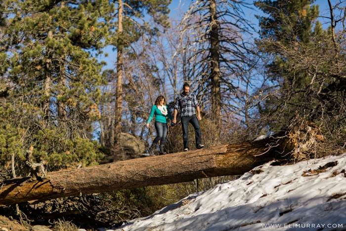 Couple walking on a log in nature
