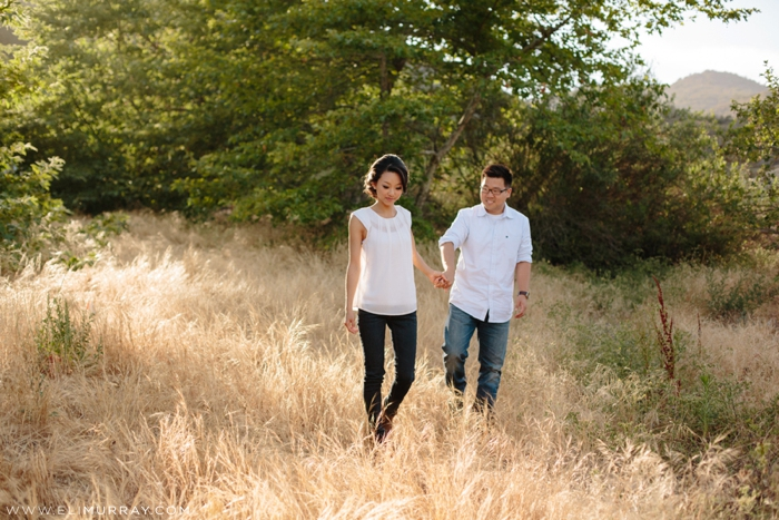 Engagement Session in South County