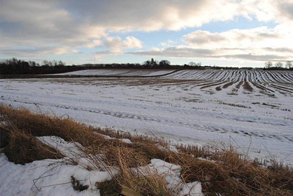 Perth Landscape Cap Field w Snow.jpg