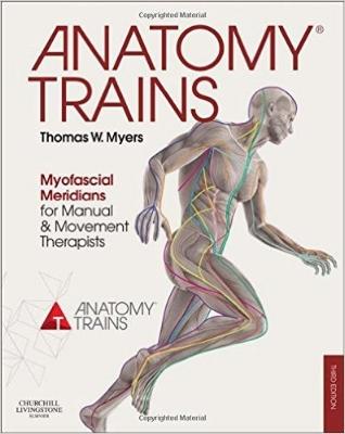 Musculoskeletal Anatomy Coloring Book By Joseph E Muscolino : Zalla pilates reading recommendations