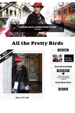Tamu McPherson interviews Allison on blog  ALL THE PRETTY BIRDS