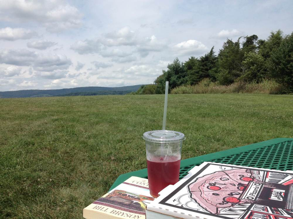 Eating, drinking, reading and enjoying the views at Franklin Park.