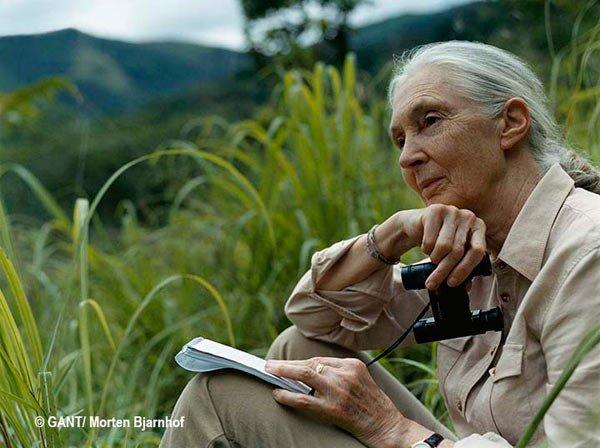 The amazing Jane Goodall