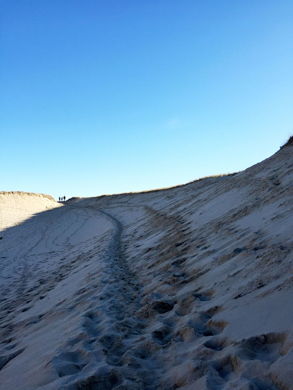 // barefoot walk through the sand dunes east of Provincetown,to the Atlantic shoreline