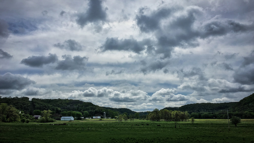 // Organic Valley
