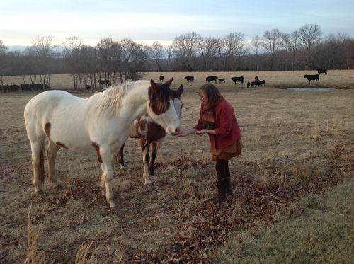 Owner Donna Branch gives Stormy and Cupcake a treat