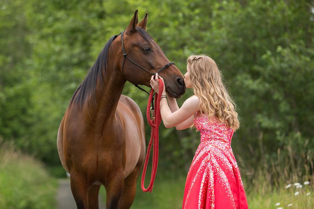 comox horse photography