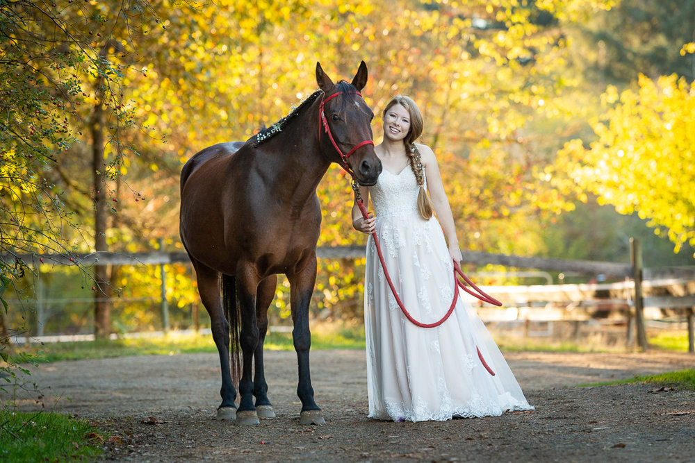 horse-1649.jpg