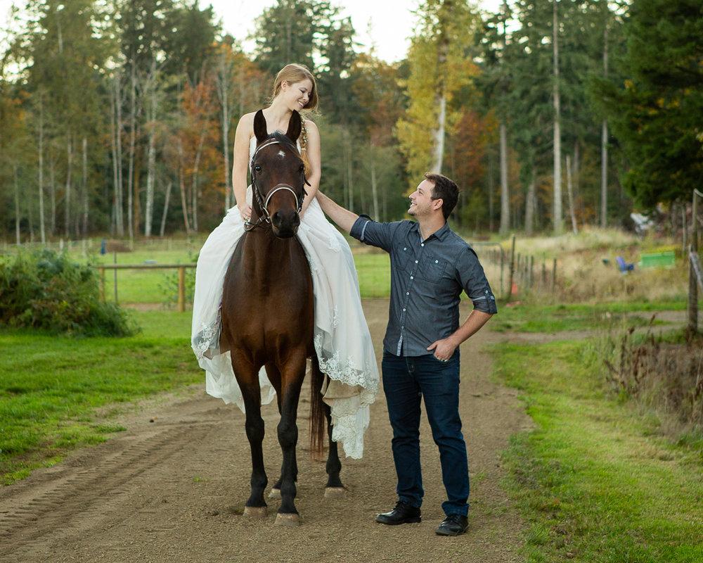 horse-1760.jpg