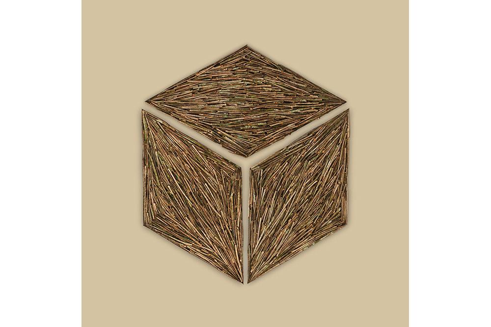 Thorn-Cube667.jpg