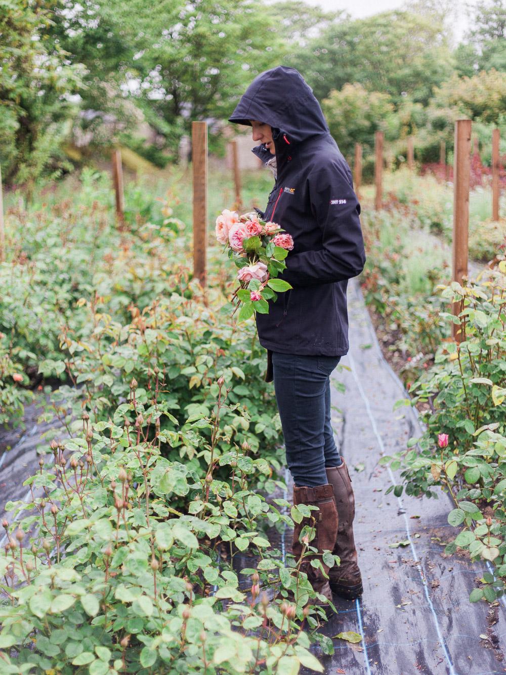 imogen xiana garden gate flower company-4.jpg