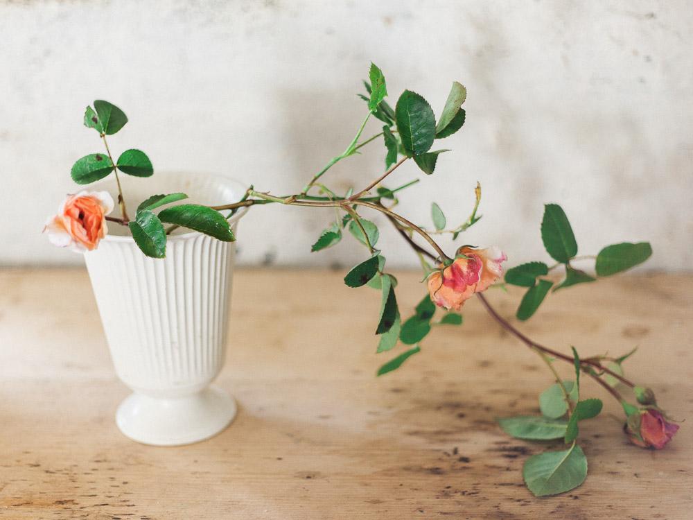 imogen xiana garden gate flower company-94.jpg