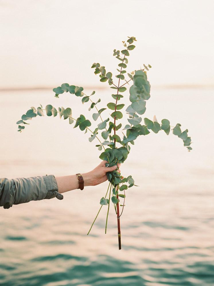 eucalyptus flowers, imogen xiana wedding photography