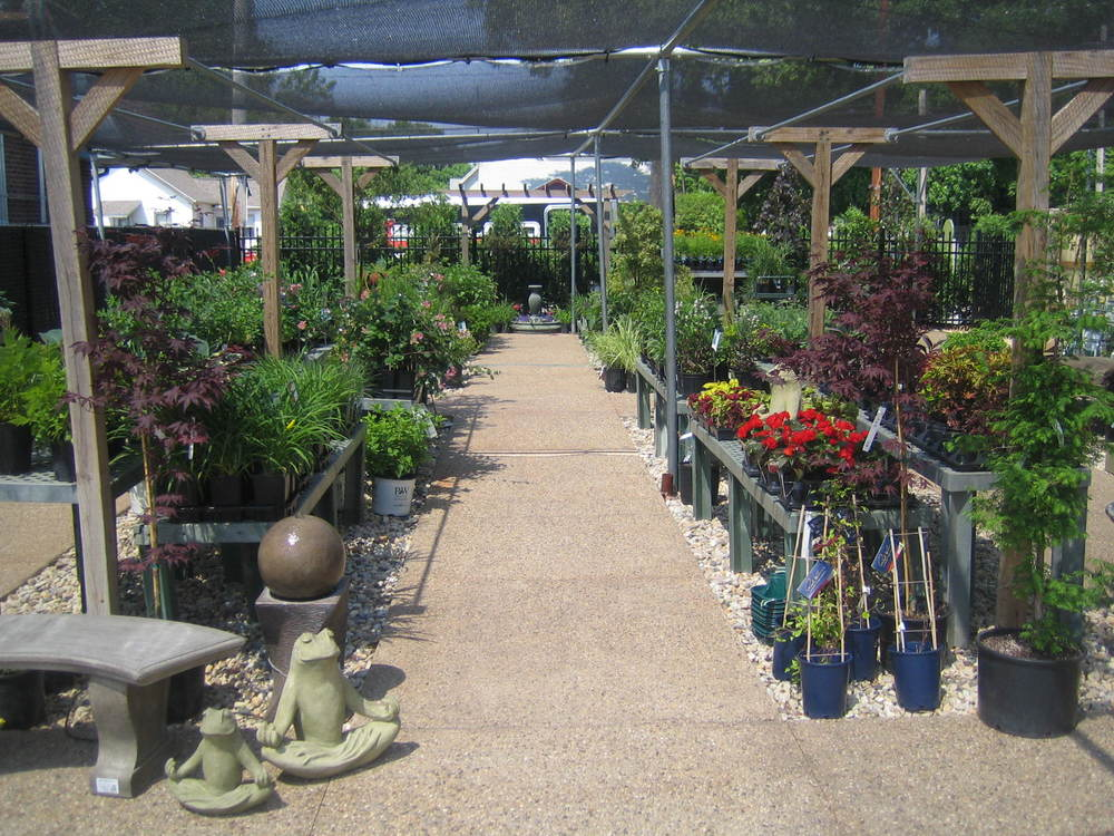 Our Garden Center is fully stocked with tons and tons of beautiful Annuals, Perennials, Shrubs, and Container Trees!