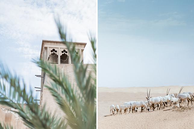 Dubai16_013b.jpg