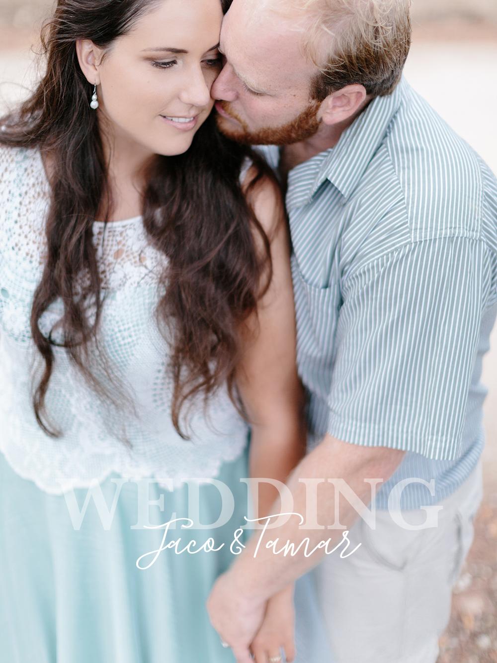 Zins bar wedding plett