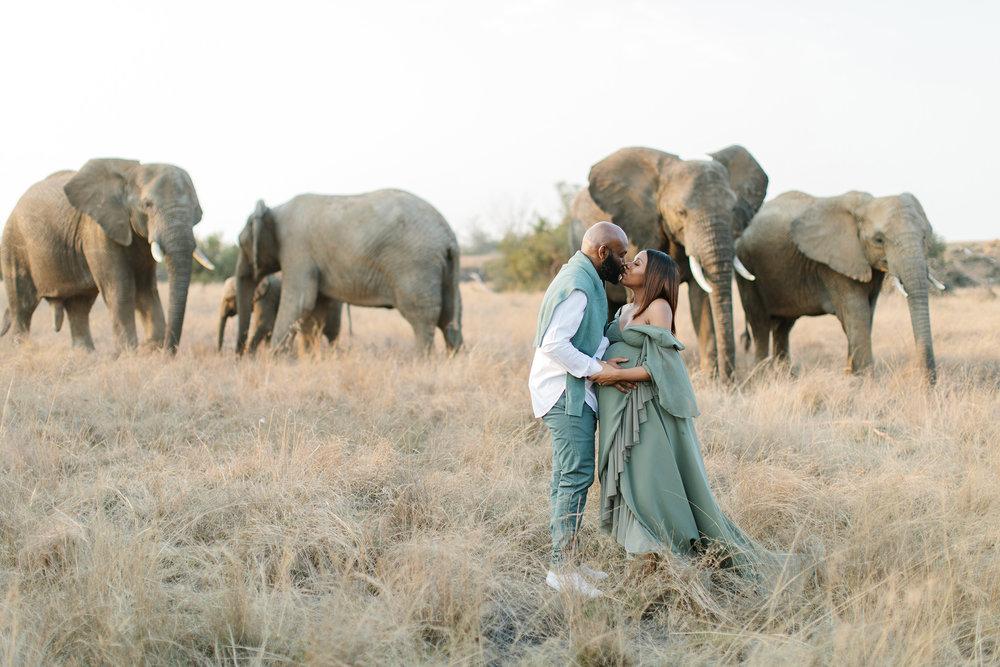 African Safari Pregnancy   Rensche Mari