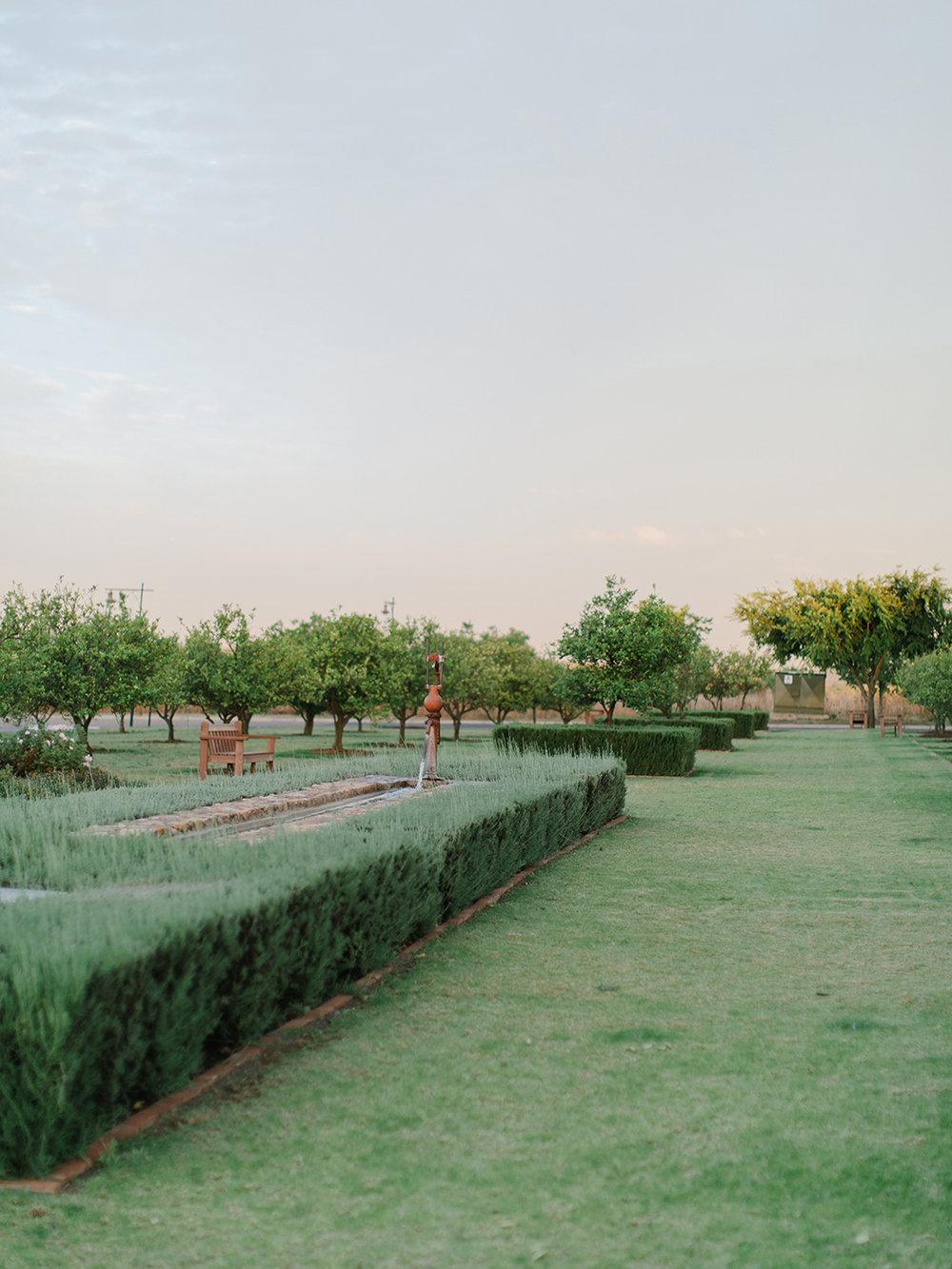 Garden   Rensche Mari Photography