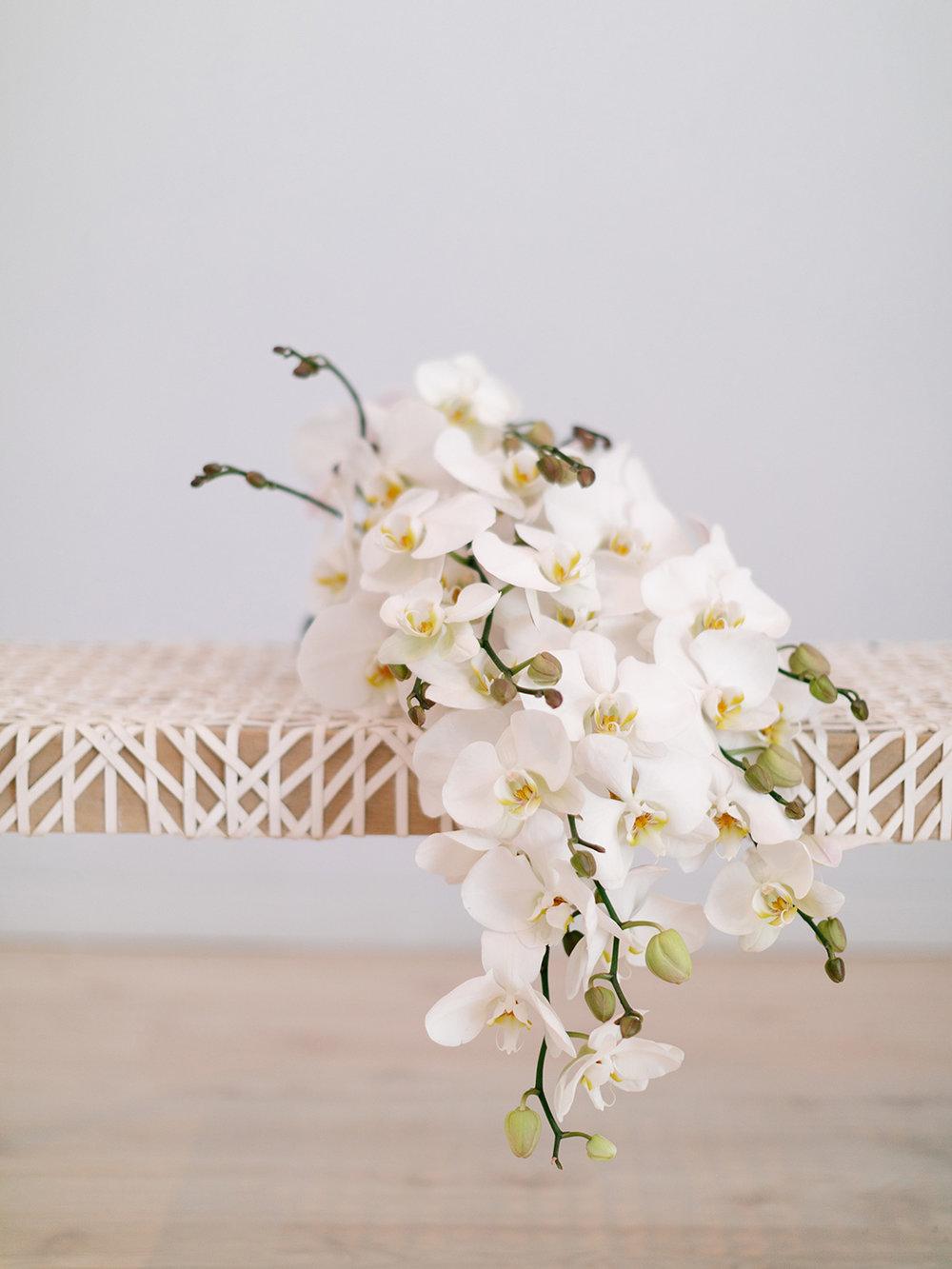 All White Bouquet | Rensche Mari Photography