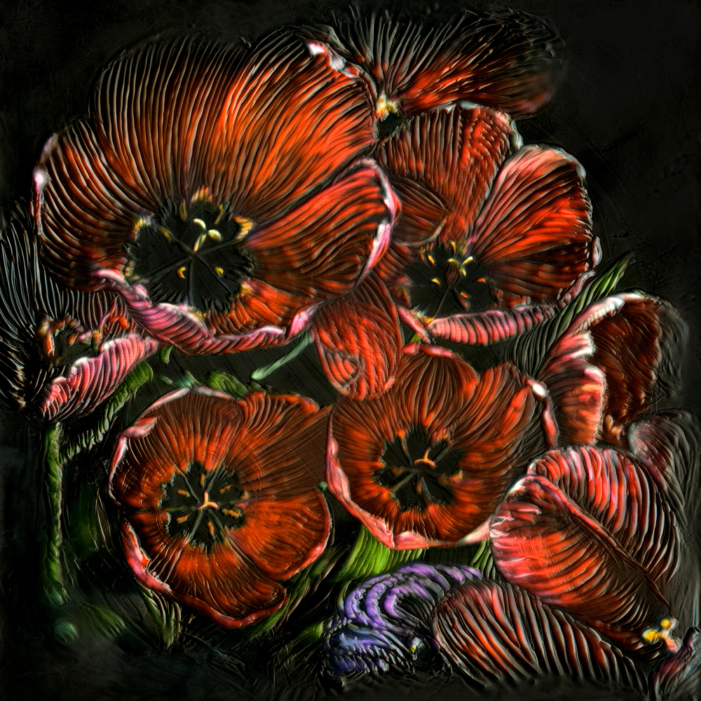 Midnight Poppies II   (12x12)