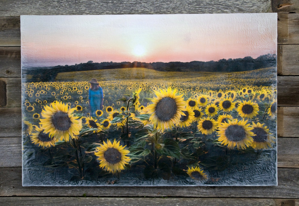 Where My Sunflower Wishes to Go   (30x45)