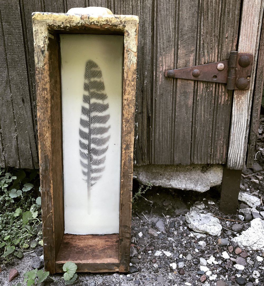 Wild Turkey Feather   (6x17)