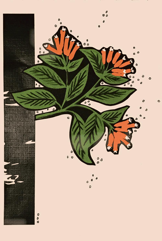 Floral Burst 1 | HeatherRoth.com/experiments