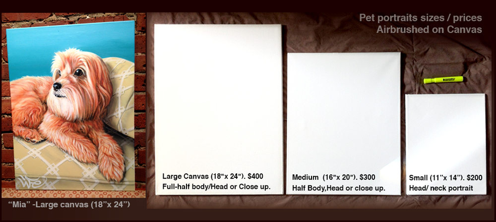Canvas sizes and prices