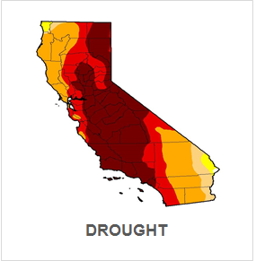DROUGHT.png