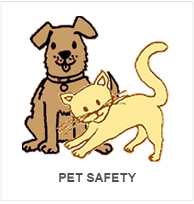 PET SAFETY.png
