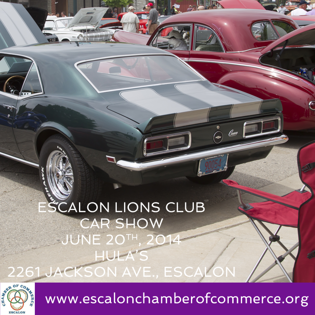 lions_car_show_june20.png