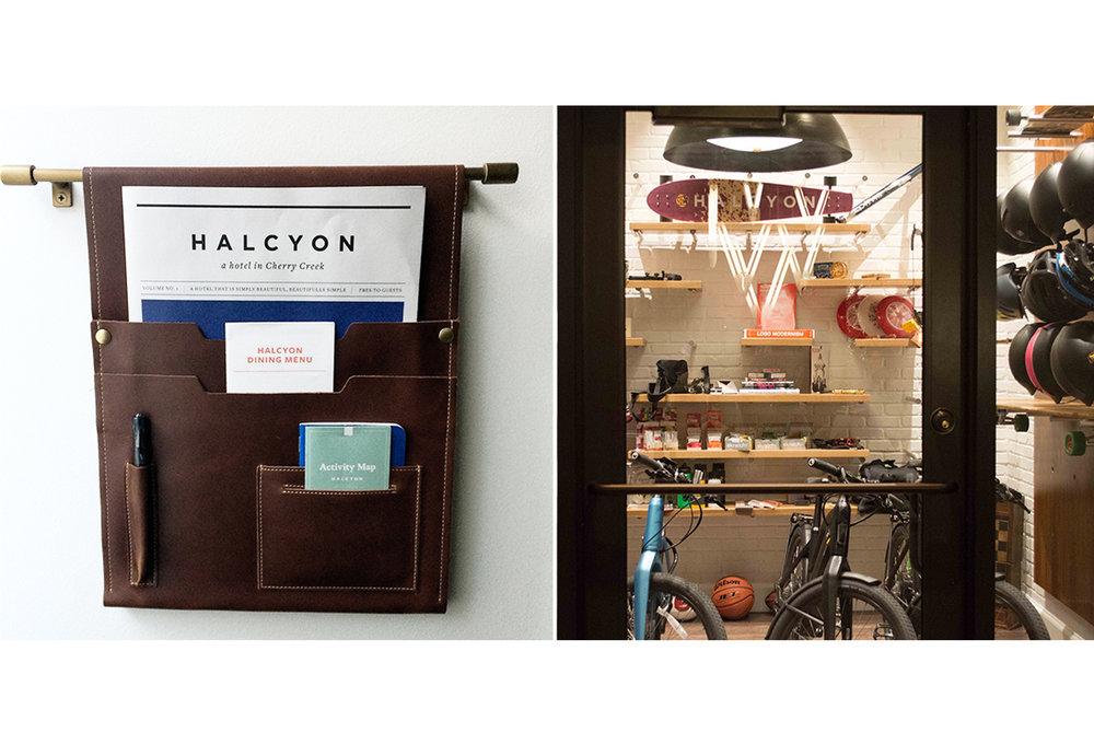 halcyon_5.jpg