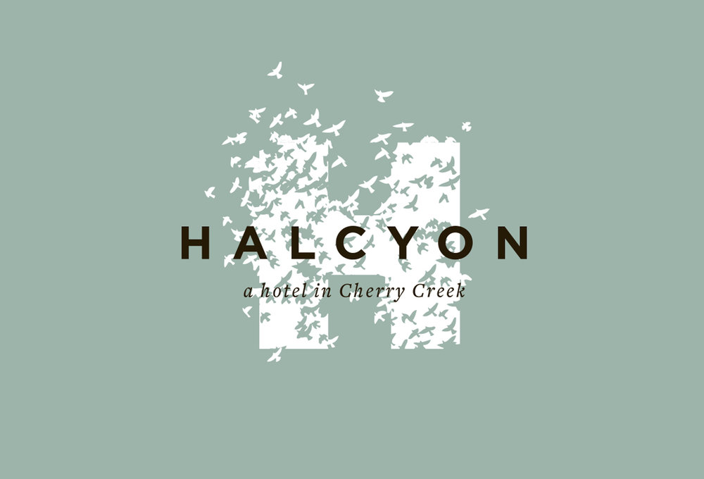 halcyon_1.jpg