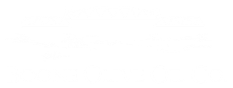 Boone Olive Oil Co.