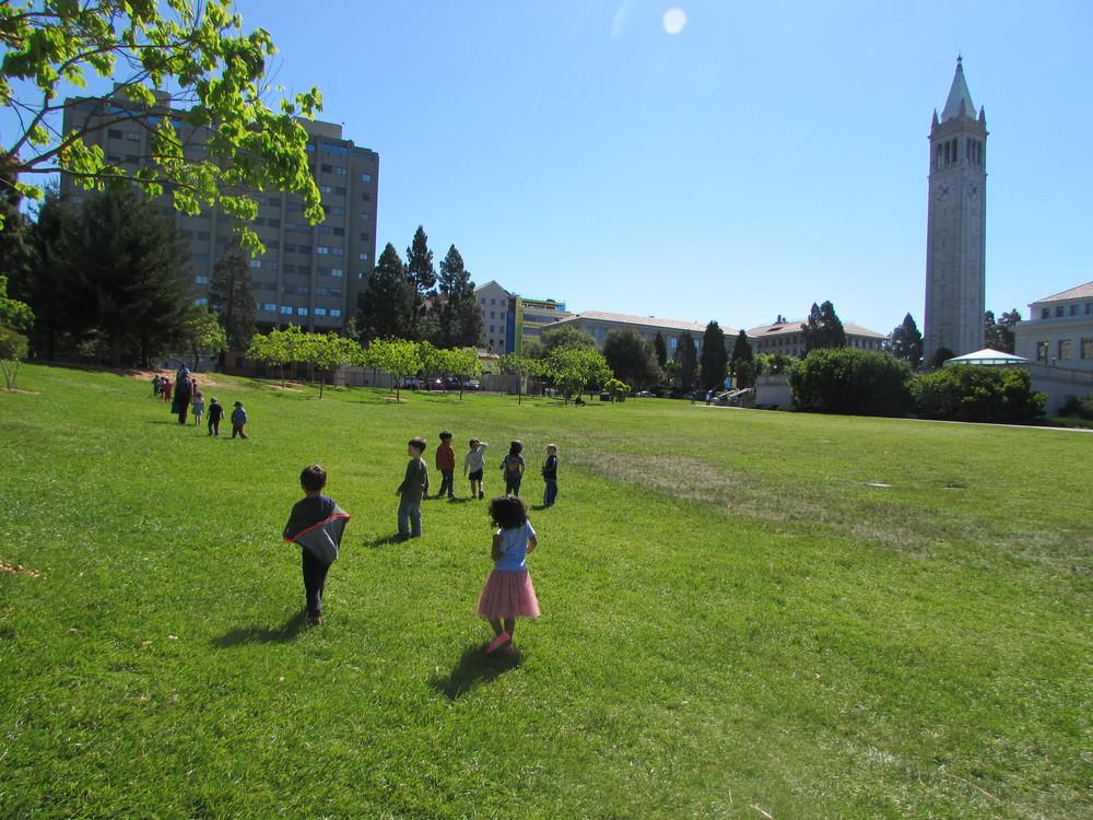 UC Cal campus #1.JPG