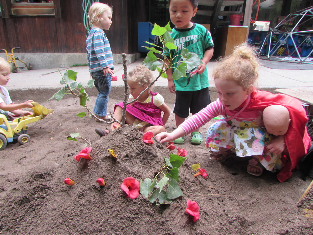 sand garden 2.JPG