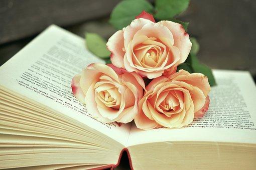 book-1771073__340.jpg