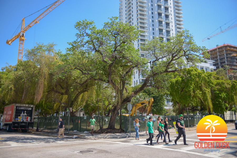 Copy of Brickell Flatiron
