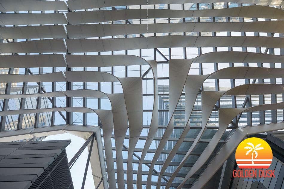 Miami Architecture-37.jpg